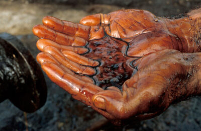 Development of Quality Programmes and Oil Laboratories in West Africa